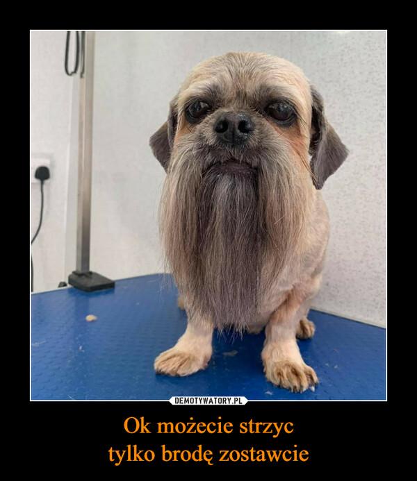 Ok możecie strzyctylko brodę zostawcie –