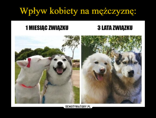 1529494223_zeutrh_600.jpg