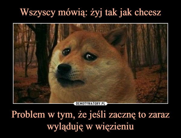 1537338319_ztmh3u_600.jpg