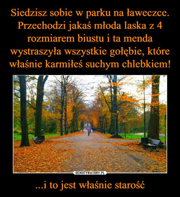 1540148646_ak957g_600.jpg