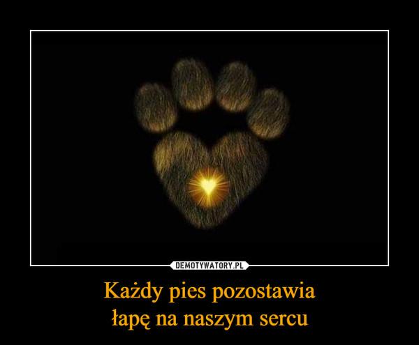 Każdy pies pozostawia łapę na naszym sercu