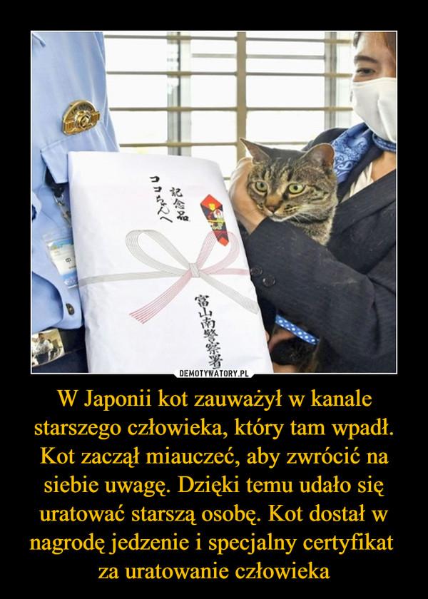 W Japonii kot zauważył w kanale starszego człowieka, który tam wpadł. Kot zaczął miauczeć, aby zwrócić na siebie uwagę. Dzięki temu udało się uratować starszą osobę. Kot dostał w nagrodę jedzenie i specjalny certyfikat za uratowanie człowieka